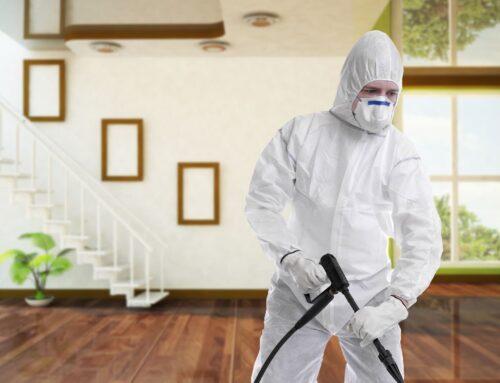 شركة تعقيم منازل في ام القيوين |0563902844| تطهير منازل