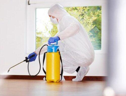 شركة تعقيم منازل في راس الخيمة |0563902844| تنظيف
