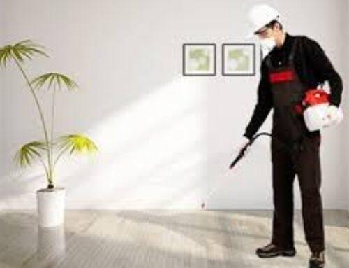 شركة تعقيم منازل في كلباء |0563902844| تعقيم و تطهير